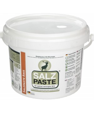 Anise flavor  salt paste 2kg