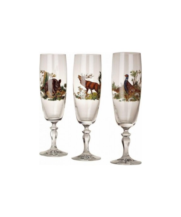 Champagne Glass Set 6 pcs (200 ml)