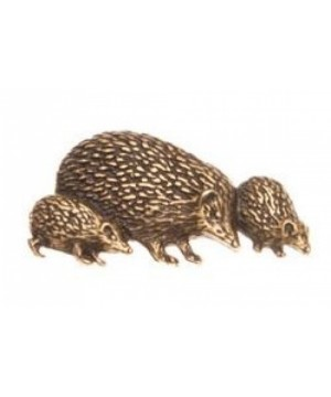 Pin Hedgehog family 81